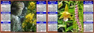 2015 Calendar days