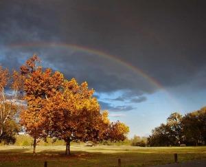 double-rainbow5
