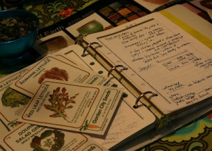 GARDEN-JOURNAL-W-SEEDS