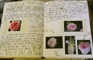 garden_journal_5