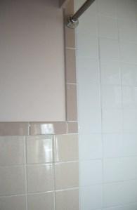 Old Tile (left)_New (right)_New Shower Rod_2016